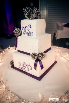 Winter wedding cake! - I LOVED how this one turned out!    Hand-painted swirls.