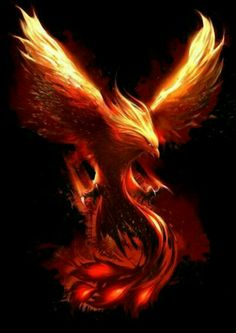 The Chained Phoenix can find Phoenix and more on our website.The Chained Phoenix 5 Phoenix Bird Tattoos, Phoenix Tattoo Design, Feather Tattoos, Tatoos, Tattoo Bird, Tattoo Animal, Fire Tattoo, Phoenix Tattoo Sleeve, Phoenix Tattoo Feminine