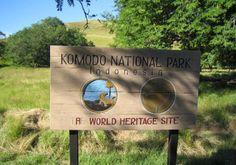 Komodo National Park, Indonesia, a World Heritage Site National Park Fees, Komodo National Park, Komodo Island Tour, Komodo Dragon, East Indies, Bali Travel, Vacation Trips, Vacations, World Heritage Sites