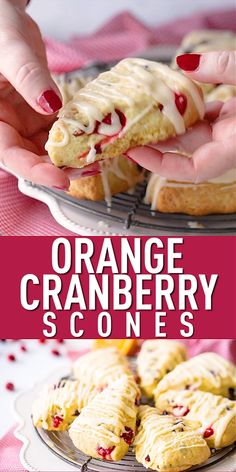 Homemade Orange Cranberry Scones: moist, tender, & even better than Starbucks! Loved the combination of fresh and dried cranberries. Brunch Recipes, Breakfast Recipes, Dessert Recipes, Breakfast Pastries, Dinner Recipes, Blueberry Scones Recipe, Easy Cranberry Scones Recipe, Scone Recipe Easy, Coconut Scones Recipe