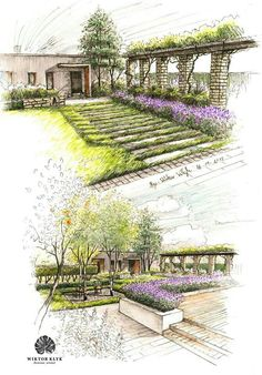 Sketchy japan pinterest modern garden design for Garden design sketches