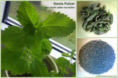 Nunist mein erstes Stevia Projektbeendet und ich kann es endlich mit euch teilen. Reines Stevia Pulver ganz leicht selber herstellen Ich habe das grüne Pulver aus einer Stevia-Pflanze, die…