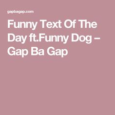 Funny Text Of The Day ft.Funny Dog – Gap Ba Gap
