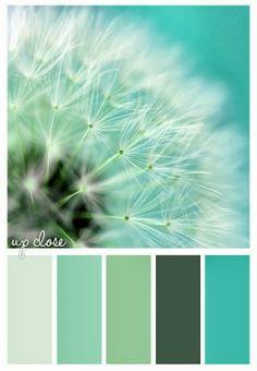 up close #inspiration #color #scheme
