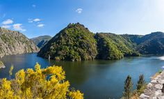 Panorámica do rio sil Cities, Places Worth Visiting, Spain Travel, Dungeons And Dragons, Countryside, Rio, History, World, Water