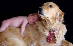 two of the sweetest things...baby and a dog