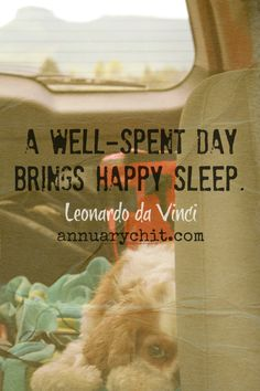 Even pets doze on road trips. Why I love travel naps... Annuary Chit