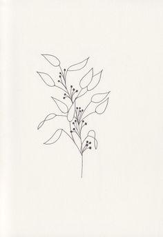 Botanical Line Drawing, Botanical Drawings, Botanical Art, Line Art Flowers, Flower Art, Doodle Drawings, Cartoon Drawings, Simple Line Drawings, Plant Drawing