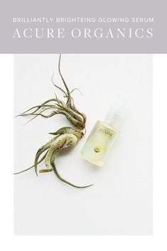 Acure Organics Brilliantly Brightening Glowing Serum Review   Green Beauty   Green Beauty Products   Natural Beauty   Natural Beauty Products   Beauty Tips   Skincare Tips   Skincare  