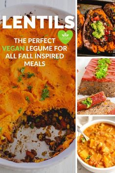 Are you looking for the perfect way to make Vegan Fall Meals this season? Lentils are not only extremly nutritions and but also a staple in any plan- based diet. This hearty legume is ideal for any fall vegan meals such as vegan lentil stew, lentil meat loaf, shepherd's pie and so many more mouth-watering dishes, Vegan Meals, Vegan Recipes, Fall Meals, Lentil Stew, Meat Loaf, Lentil Recipes, Vegans, Chana Masala, Lentils