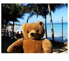 Photo by me. Photo: Diána Rigó Varadero, Cuba #Cuba #Varadero #travel #photography #teddy