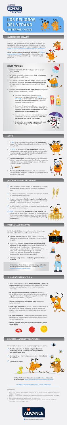 ¿Cuáles son los peligros que pueden afectar a tu perro o gato en verano? Descubre cuáles son y cómo evitarlos www.facebook.com/Advance.affinity www.affinity-petcare.com/advance