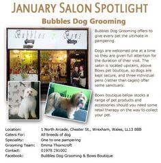 Salon Spotlight January 2012, Bubbles Dog Grooming