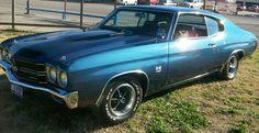 $1,000 Reward for Unrestored Pontiac Ventura Late 60's