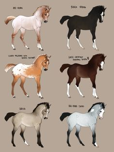 For sale for 100 points! by Wakimi on DeviantArt Cute Horses, Pretty Horses, Horse Love, Beautiful Horses, Animals Beautiful, Horse Color Chart, Spirit The Horse, Horse Animation, Horse Coat Colors