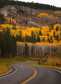 The Black Hills in the fall.... when there is very minimal traffic and the leaves are all yellow and orange.... Beautiful place to be!