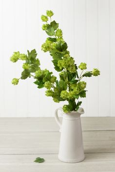 This lush blooming hops spray is filled hops and leaves made with poly silks. This is a faux hops garland with hints of cream and green. For a lush garden wedding look, use the Hops sp Beer Wedding, Rooftop Wedding, Living Room Plants, Bedroom Plants, Floral Garland, Flower Garlands, Hops Plant, Kitchen Plants, Save On Crafts