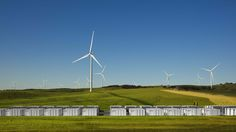 Tesla announces it's building the largest lithium-ion battery storage project in the world, in South Australia --- June 2017