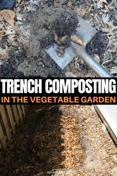 Add nutritional compost to your vegetable garden using this simple method that doesn't require building, piling, measuring, or maintenance. Slugs In Garden, Fruit Garden, Garden Pests, Garden Fertilizers, Garden Insects, No Till Garden, Composting Methods, How To Make Compost, Backyard Vegetable Gardens