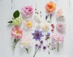 Blooms from Decorate With Flowers by Holly Becker and Leslie Shewring