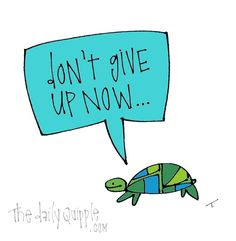 Don't give up now...says the turtle of perseverance!