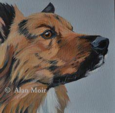Alan Moir. Freddy - acrylic on canvas www.facebook.com/alan.moir.painter