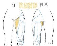 Body Reference Drawing, Anatomy Reference, Drawing Skills, Art Reference Poses, Drawing Studies, Drawing Legs, Body Drawing, Drawing Base, Manga Drawing Tutorials
