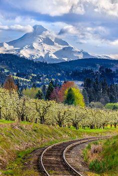 Mt.Hood, Oregon.