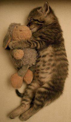 je dors avec mon doudou !