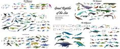 """Great Reptiles of the Sea: Chart of every aquatic """"dinosaur"""" discovered to date: 27 families, 241 genera"""