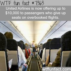Well, Well, Well, if it isn't them again.WTF fun facts