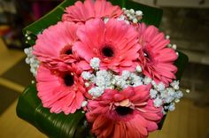 coral gerbera daisy and hydranga bouquet - Google Search