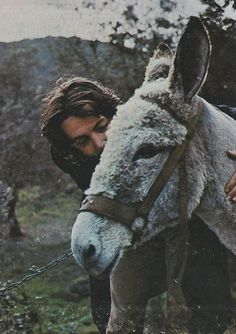 ~Paul & donkey By Linda McCartney ~*