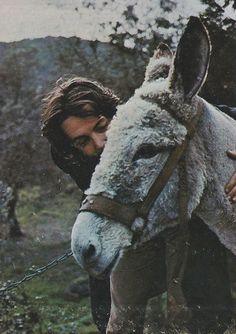 ~Paul & donkey By Linda McCartney ~*