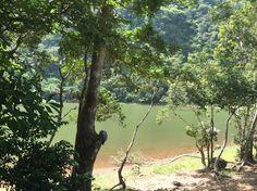 Laguna de San Carlos. Panamá.