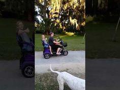 No more strollers needed! Kids Seating, Strollers, Tricycle, Stroller Bag, Baby Strollers, Cart