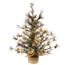Dakota 3' Pine with Burlap Base Artificial Christmas Tree with 70 Clear Light