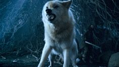 George R. Martin reveals 5 new facts about HBO's Game of Thrones prequel Game Of Thrones Prequel, Game Of Thrones Cast, Lannister Family, The Winds Of Winter, The Longest Night, George Rr Martin, Ensemble Cast, Executive Producer, Winter Is Coming