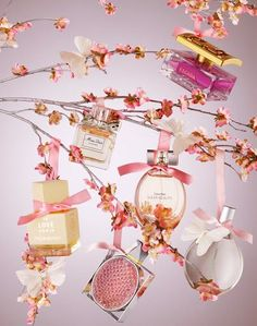 """Fragrance speaks the loudest on a subliminal level."" via: http://www.clicksnm.com/perfume-emporium-promo-codes/all-coupons"