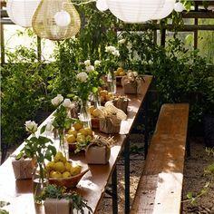 Vintage Biergarten Table | Beer Garden Table and Benches