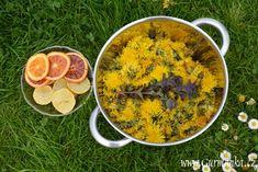 PAMPELISKOVY MED Home Remedies, Ethnic Recipes, Food, Decor, Syrup, Remedies, Decorating, Dekoration, Deco