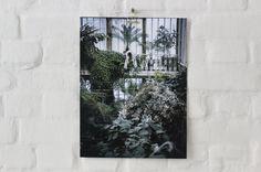 Photo print Secret Garden.