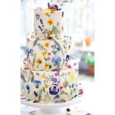 Edible Flower Cake 567 Likes, 27 Comments - Sammi-jo Ga .- Essbarer Blumenkuchen 567 Likes, 27 Kommentare – Sammi-jo Gascoyne (Blushing Cook) zu Edible Flower Cake 567 Likes, 27 Comments – Sammi-jo Gascoyne (Blushing Cook) … – - Pretty Cakes, Beautiful Cakes, Amazing Cakes, Beautiful Flowers, Floral Wedding Cakes, Wedding Cake Designs, Floral Cake, Colourful Wedding Cake, Wedding Cake Flowers