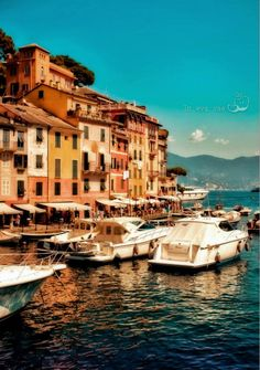 PORTOFINO, ITALY   With its dramatic tree-lined cliffs, ocean views, warm weather and delicious food, Portofino is the incarnation of La Dolce Vita. Located along the Italian Riviera it is a playground for the rich and famous.