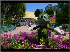 Mickey and Festival Center