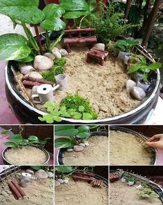 Mini jardim                                                                                                                                                                                 Mais