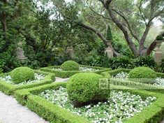 Parterre Garden + White Flowers Design Ideas, Pictures, Remodel and Decor
