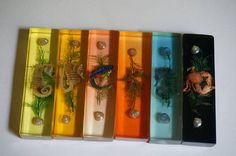 60s perspex lucite resin nclusion 1960s kitsch  https://www.etsy.com/listing/560134903/vintage-60s-perspex-lucite-6-knife-rests?ref=shop_home_active_1