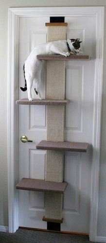 SmartCat Multi-Level Cat Climber by SmartCat, http://www.amazon.com/dp/B001362AFS/ref=cm_sw_r_pi_dp_Q1jyrb0GTEYKR