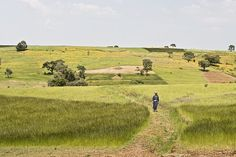 Scenes from Ethiopia, blogged by @Diana Prichard, #ONEMoms